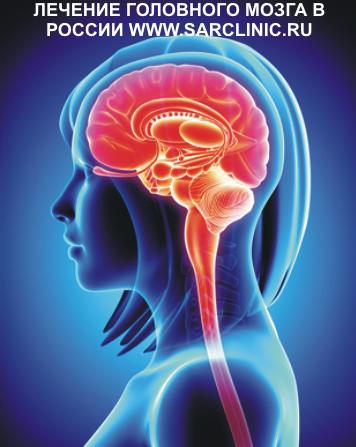 головной мозг человека, ребенка, отделы, строение, лечение головного мозга, как лечить