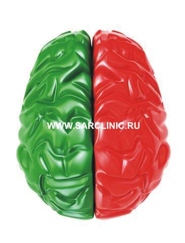 речевые зоны коры головного мозга: моторная, сенсорная, центр Вернике, лечение