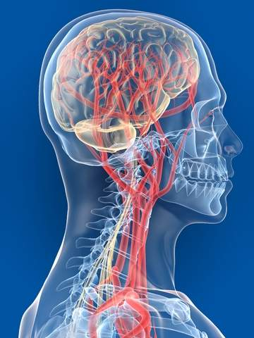 лечение нервной системы в саратове